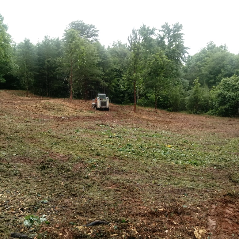 Clearing and grading overgrown property